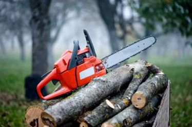 Tree Removal and Trimming Services in Bucks PA